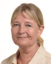 MEP Marita Ulvskog