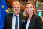 VP/HR Mogherini discussed the Iran Agreement with the members of AFET's Enlarged Bureau