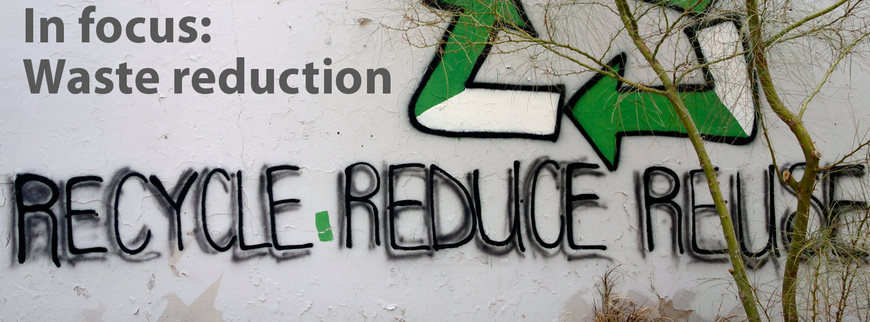 In Focus: Waste reduction