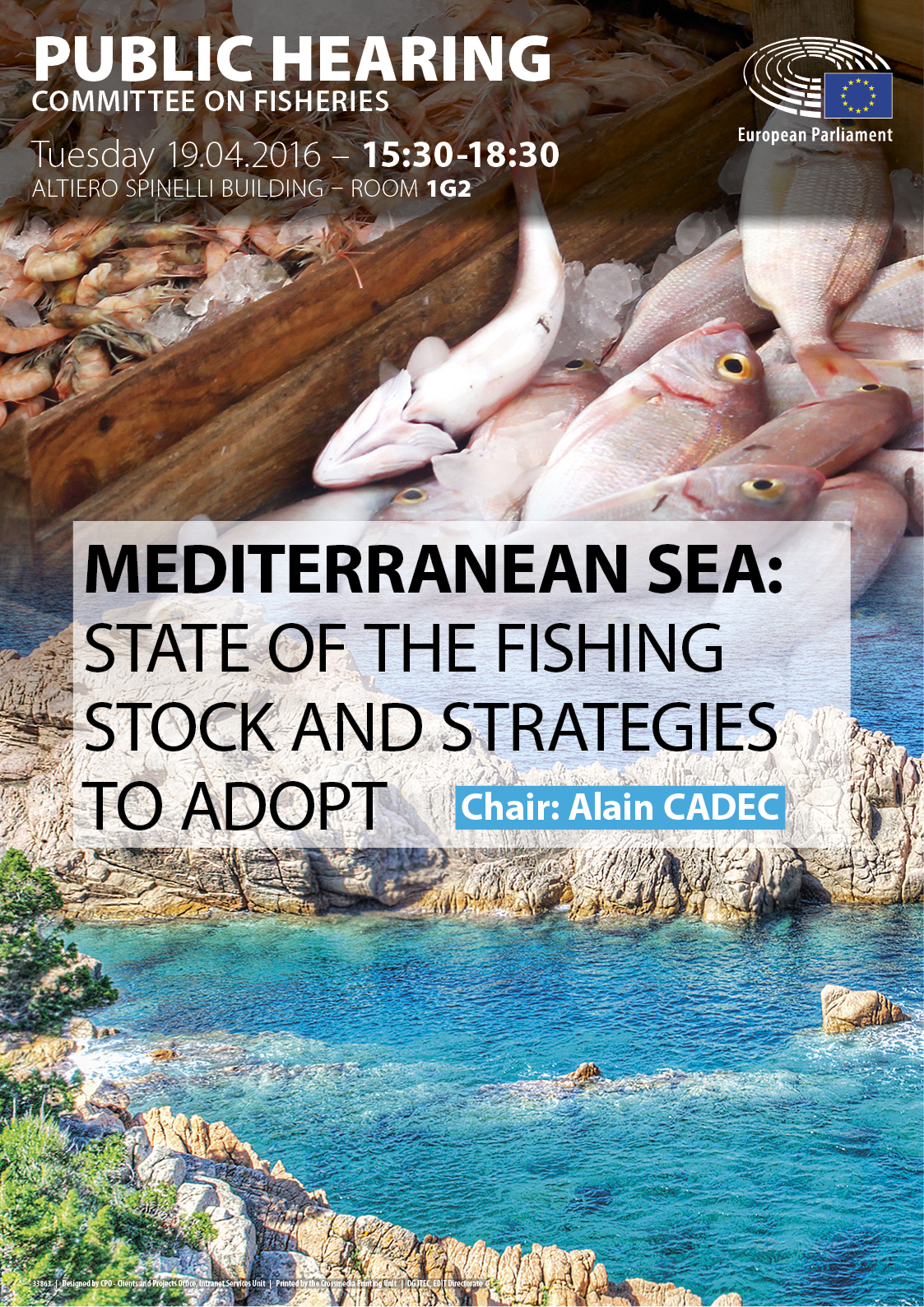 Mediterranean Sea: State of the fishing stock and strategies to adopt