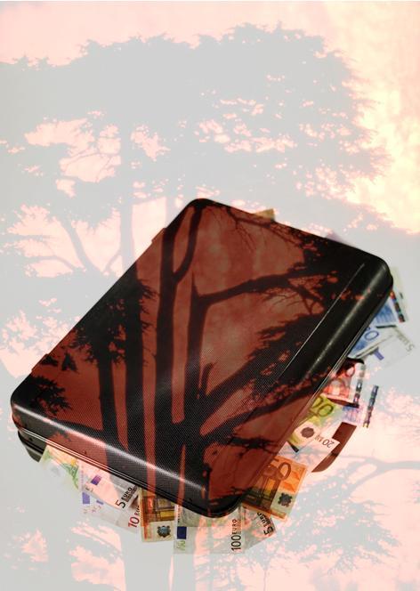 Superposición de una maleta llena de euros y un árbol en llamas