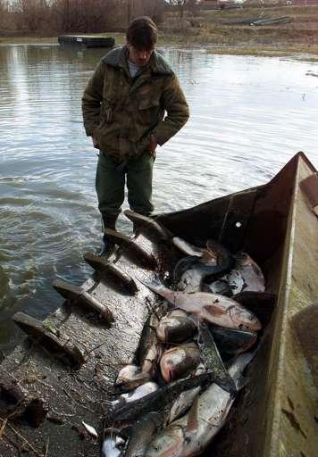 Peste 100 000 m3 de apă contaminată cu  cianură au fost deversaţi dintr-un bazin al minei de aur din Baia Mare  în 2000. ©BELGA_EPA PHOTO EPA_ATTILA KISBENEDEK