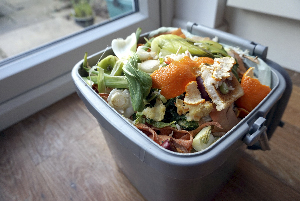 Recyclable food waste in bin