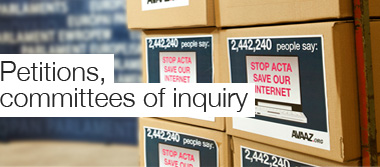 Petitions, committees of inquiry