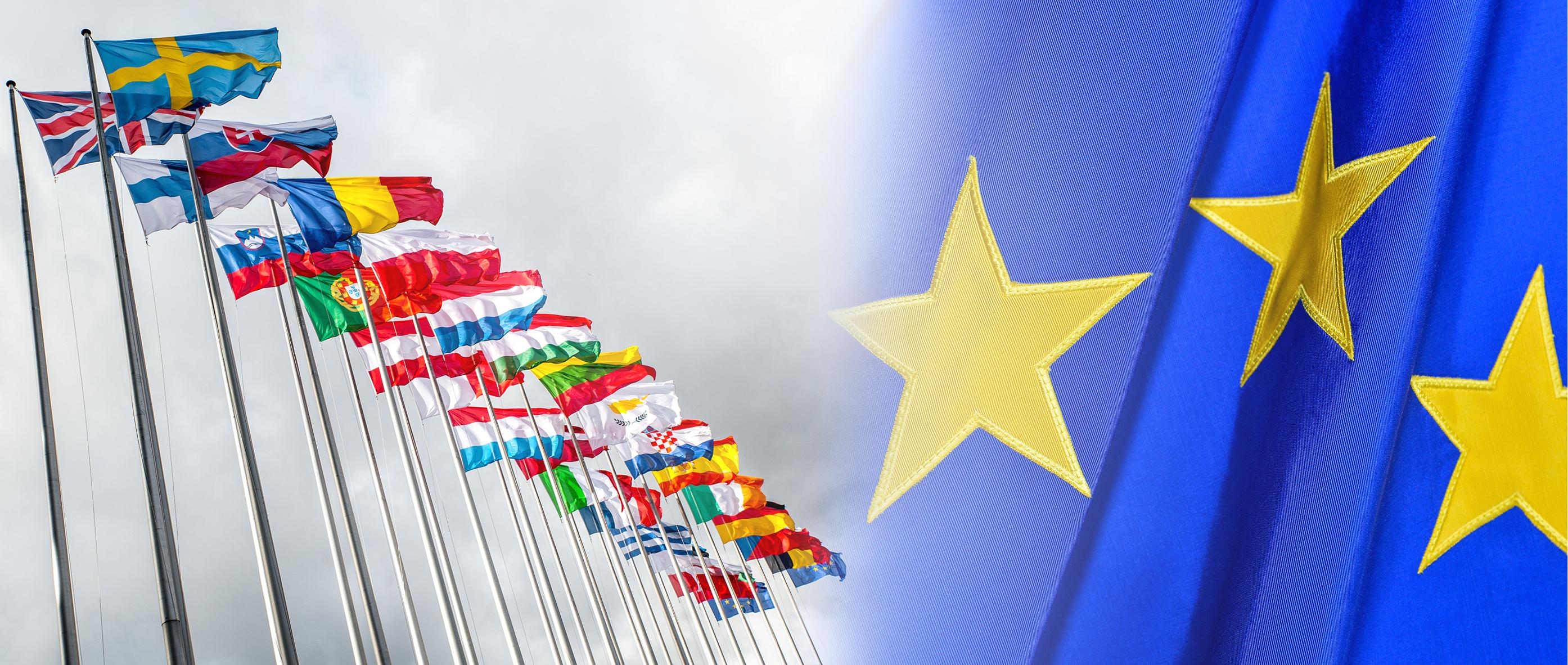 Глобальна стратегія ЄС:  Місце, роль і внесок України