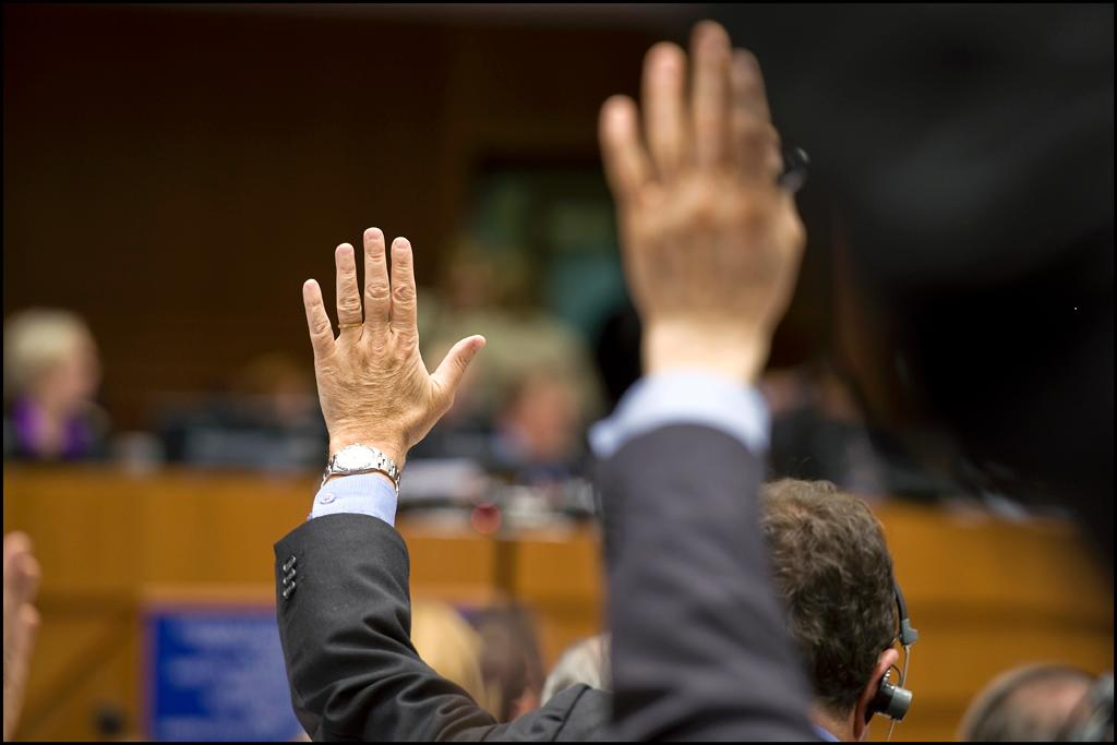 Hands up for animals: MEPs want the lessons of previous years to be learned