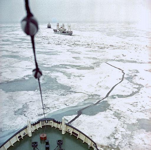 A convoy of ships going through a channel made by an icebreaker ©BELGA