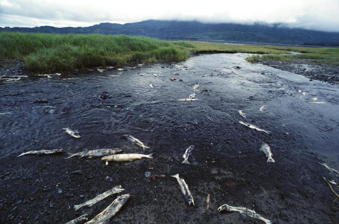 Wasserverschmutzung kostet Millionen von Menschenleben ©GETTY