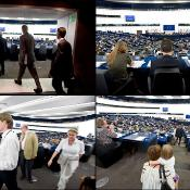 4 photos showing views in the plenary