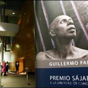 Poster of last year's winner Guillermo Fariñas in Strasbourg