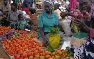 African market@European Parliament