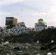 Landfill in Essex, UK