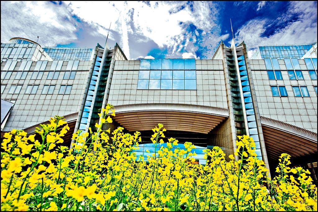 Parlamentul European cere mai multă eficiență în utilizarea resurselor