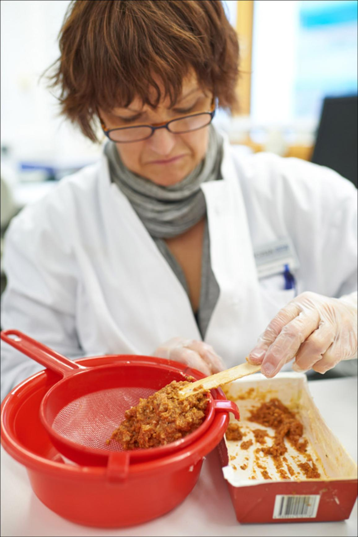 A laboratory assistant prepares a meat sample of lasagna for a DNA test at the veterinary research office Rhein-Ruhr-Wupper in Krefeld, western Germany on February 14, 2013. © BELGA_AFP_BERND THISSEN