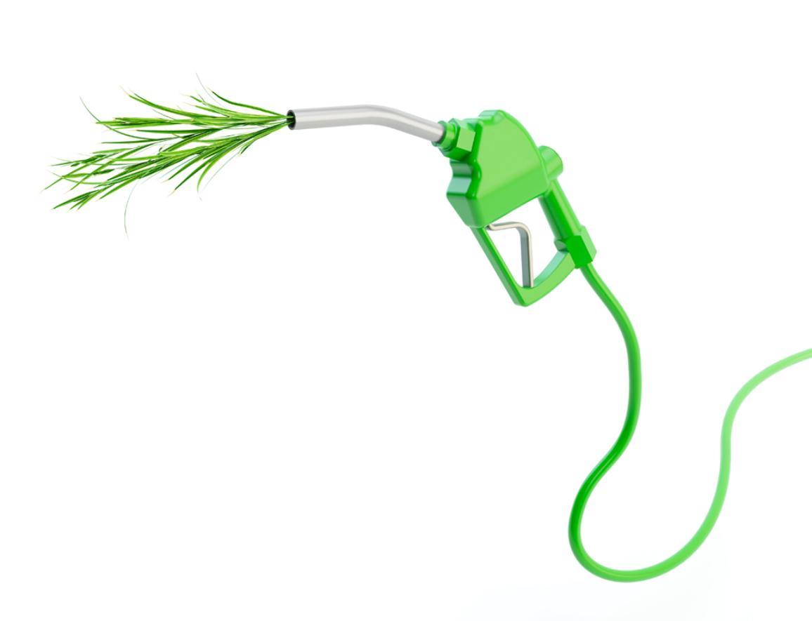 Imagen de una obra de arte conceptual sobre los biocombustibles. © BELGA_SCIENCE