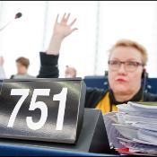 Schwarzes Schild mit der Nummer 751 und im Hintergrund eine Abgeordnete, die ihre Hand hebt
