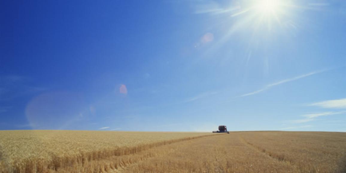 Biofuels Intro story illu