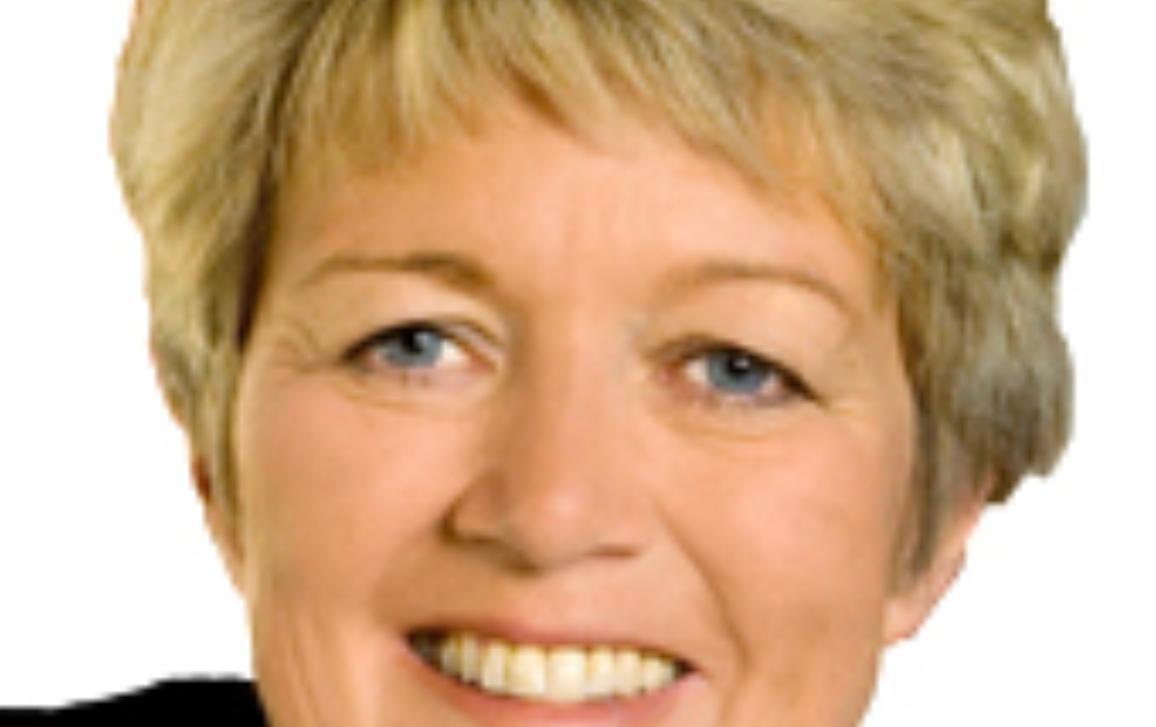 MEP Birgit Collin-Langen