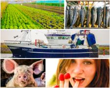 EE2014 PKH Thumbnail Agriculture and fisheries