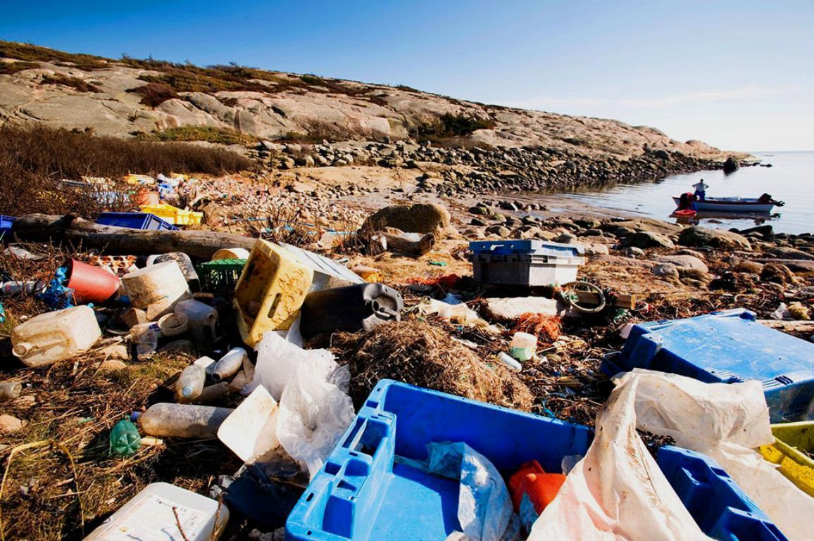 Garbage on Ocean Coast