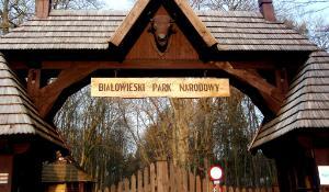 Bialowieski Park Nardowy, Poland