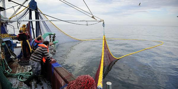 "Fishermen pull out their nets from water aboard the fishing boat ""Kanedevenn"" as they fish sardines on September 24, 2013 in Quiberon, western France."