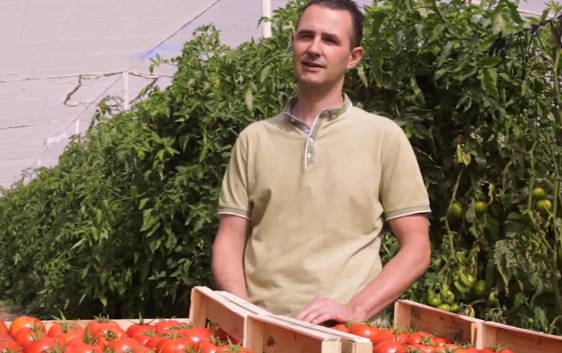 Tom managt eine Tomatenfarm in Belgien, auf der Arbeiter aus verschiedenen europäischen Ländern beschäftigt sind