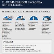 Infographic EC election