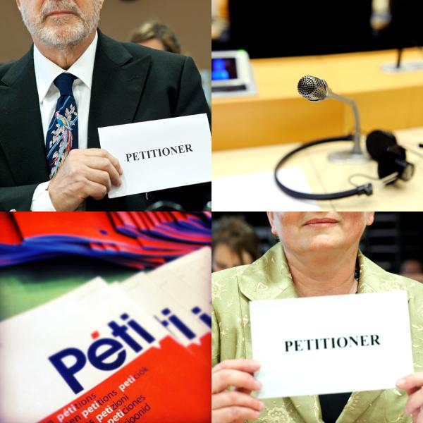 What is a petition? Petitioner at the EP