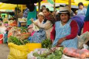 Ecuadorian ethnic women in national clothes selling agricultural products and other food items on a market in the Gualaceo village