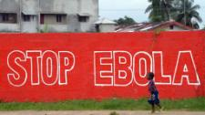 MEPs urge EU countries to strengthen the fight against ebola, debate Google antitrust violations and question the future of the European Youth Initiative.