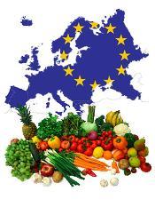 Novel foods in EU