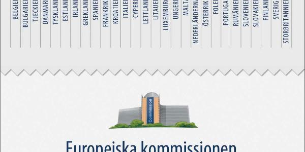 Nyhetsgrafik om EU>s institutioner