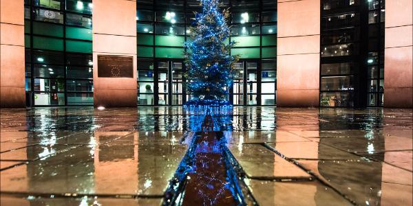 Julgran i Strasbourg.
