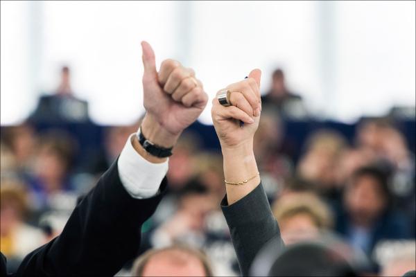 Le foto della plenaria