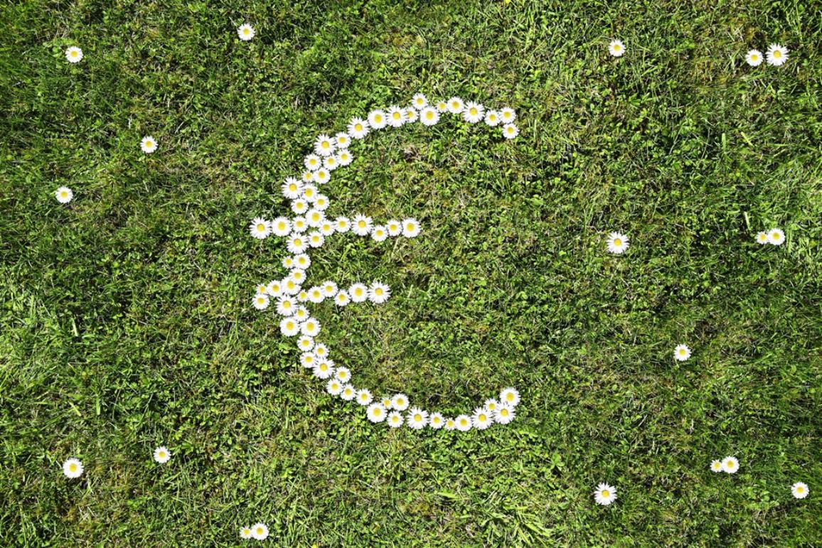 Композиция от цветя във формата на знака на еврото
