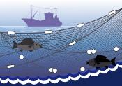 Fishing boat and fishing net