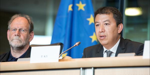 Portrait de Patrick Ky au Parlement européen