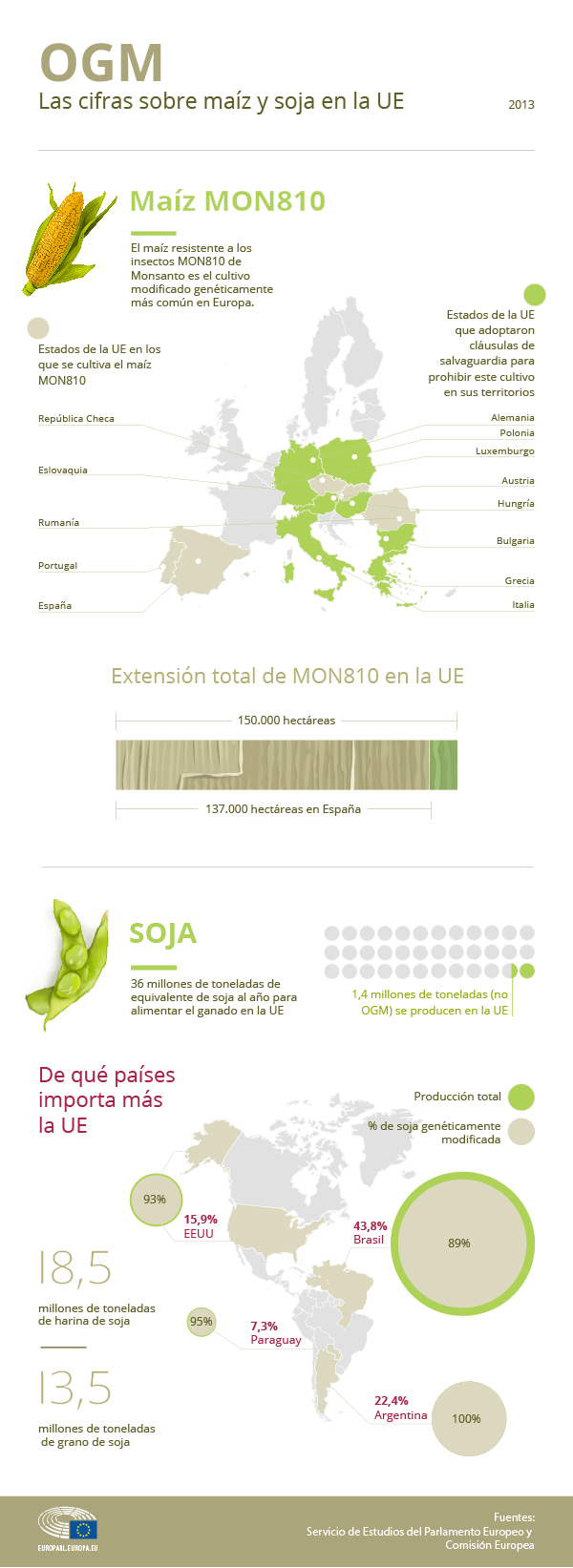 Infografía con los detalles sobre el cultivo y la importación de OGM en la UE.