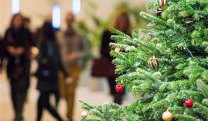 Un sapin de Noël au Parlement européen