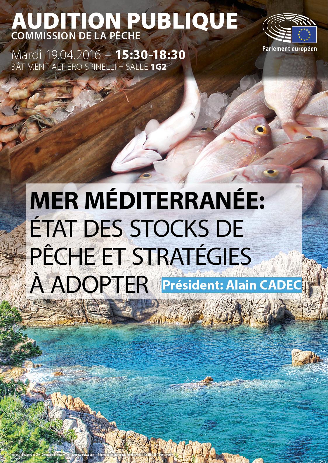 Affiche pour l'audition publique sur Mer méditerranée