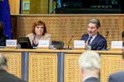 Ms Mihaylova and Mr Cattaneo chairing the REGI-COTER meeting