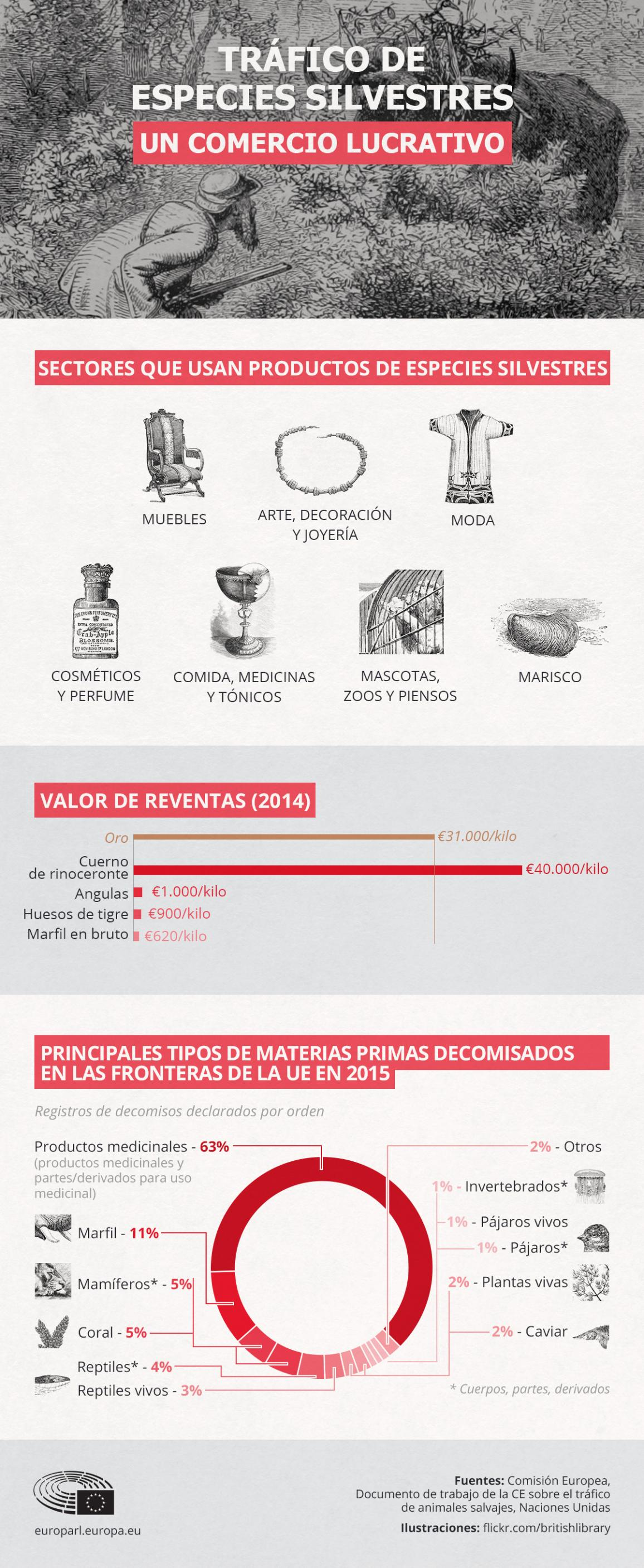 Infografía: El tráfico de especies animales es un negocio muy lucrativo