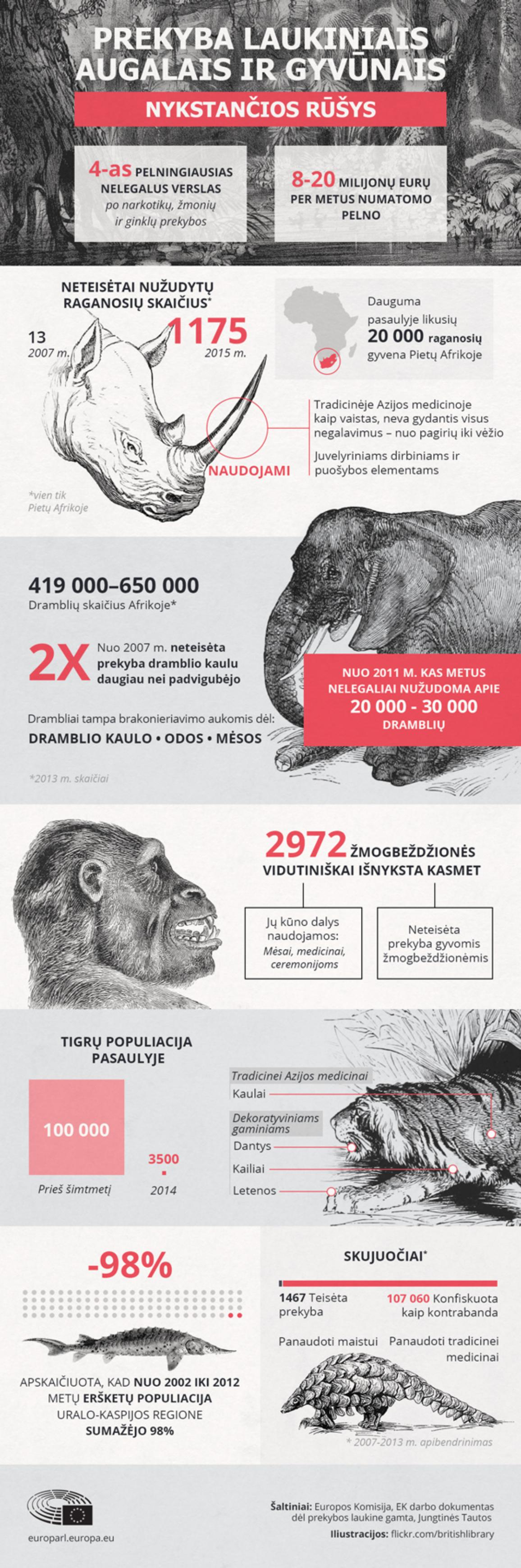 2010 metai - Tarptautiniai biologinės įvairovės metai