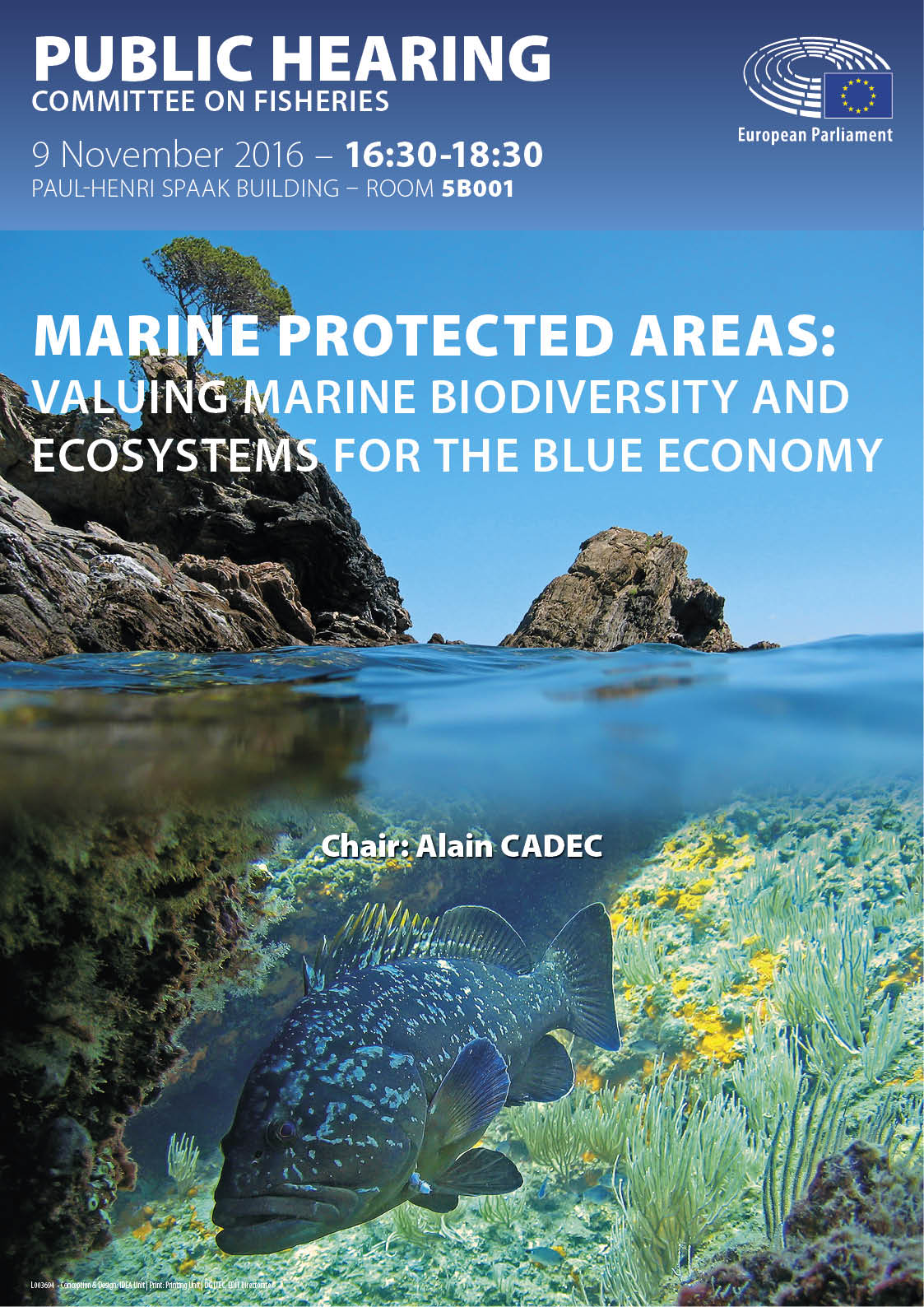 Poster for public hearing on Marine protected areas in EN