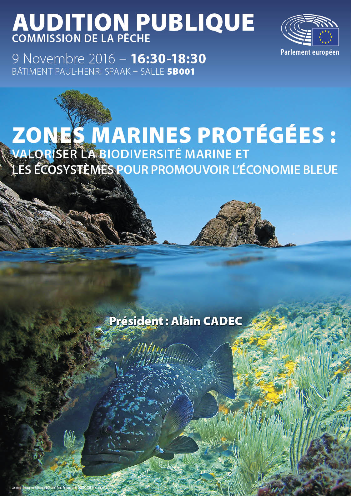 Poster for public hearing on Marine protected areas in FR