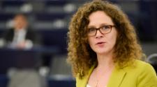 Seeing recent cracks in Europe's democratic bedrock, MEPs push for new protections and safeguards to cherished rights and freedoms.