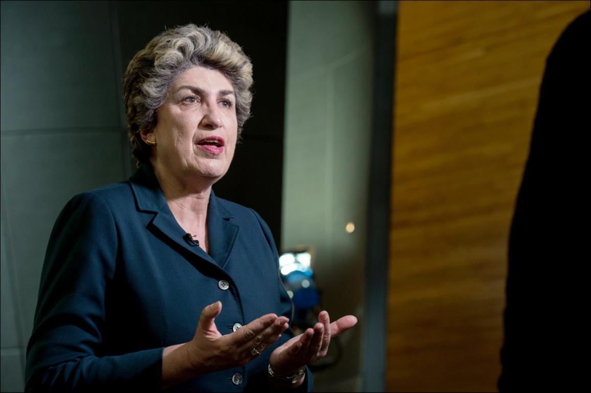 Maria João Rodrigues esindab parlamendis sotsiaaldemokraatide ja demokraatide fraktsiooni ning Portugali