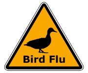 bird flu sign