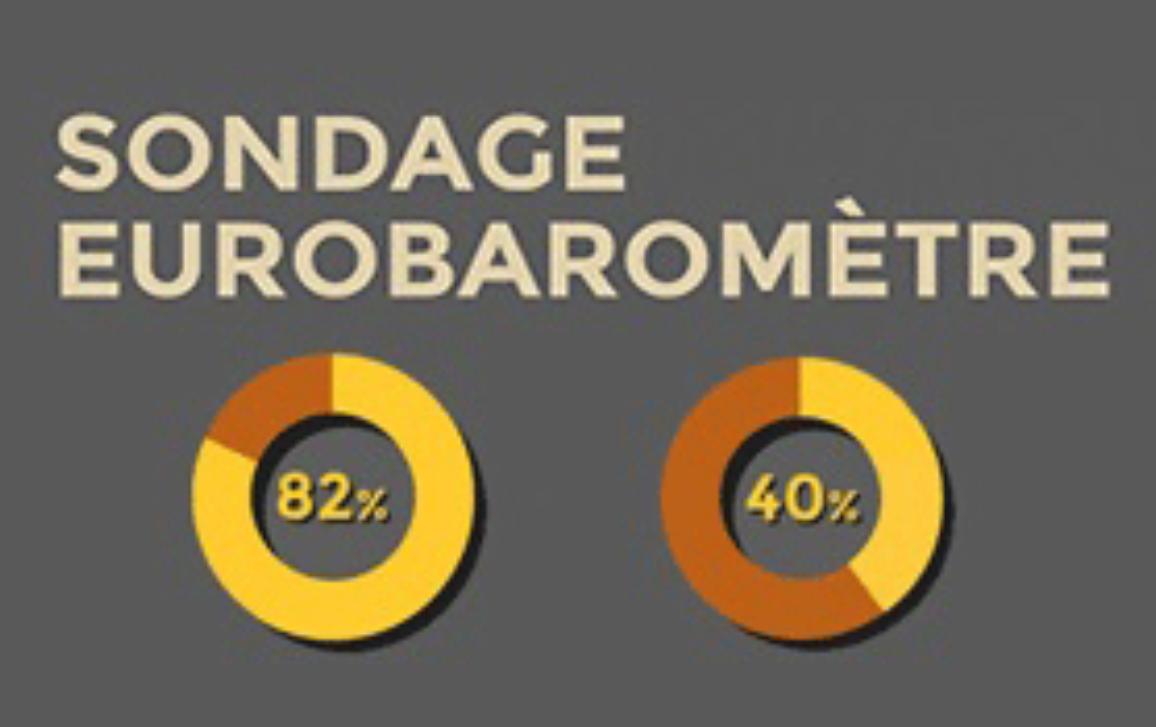 Cliquez sur l'infographie pour en savoir plus sur les mesures adoptées par le Parlement pour lutter contre le terrorisme